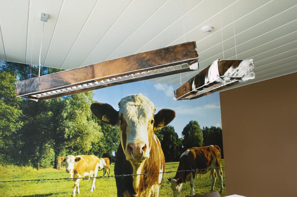 Moodboard d-cow